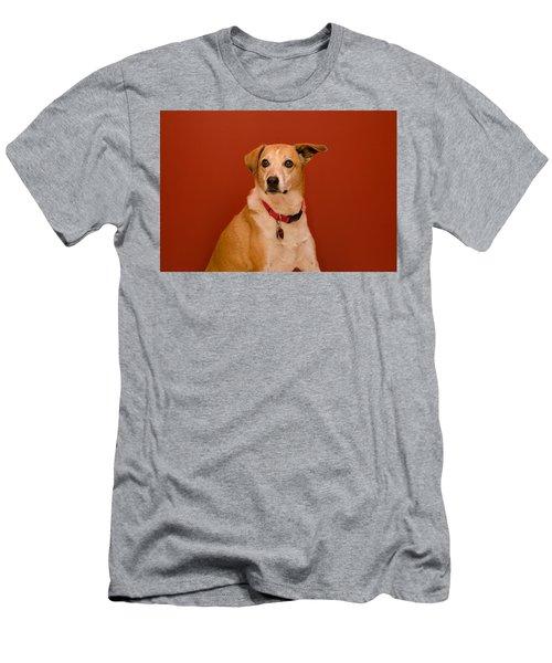 Abbie Men's T-Shirt (Athletic Fit)