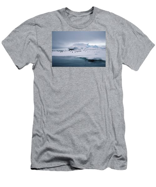 Adelie Penguins On Iceberg Weddell Sea Men's T-Shirt (Slim Fit)