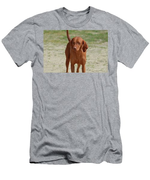 Adorable Redbone Coonhound Standing Alone Men's T-Shirt (Athletic Fit)
