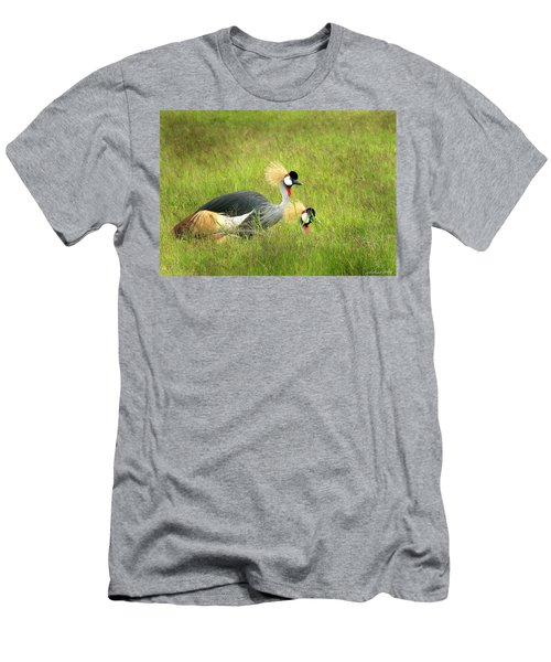 African Gray Crown Crane Men's T-Shirt (Athletic Fit)