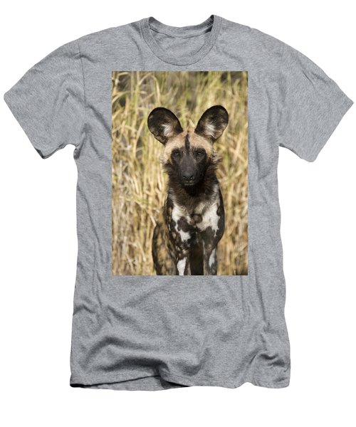 Men's T-Shirt (Athletic Fit) featuring the photograph African Wild Dog Okavango Delta Botswana by Suzi Eszterhas