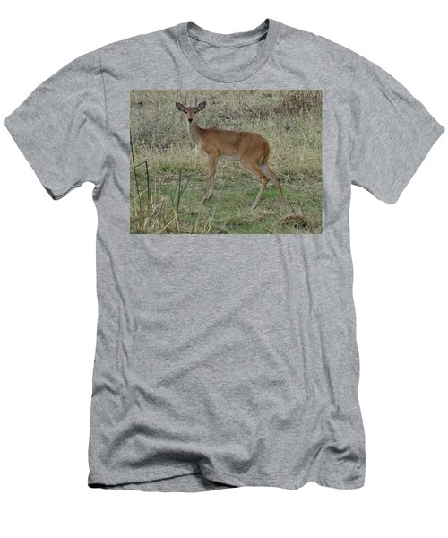African Wildlife 1 Men's T-Shirt (Athletic Fit)