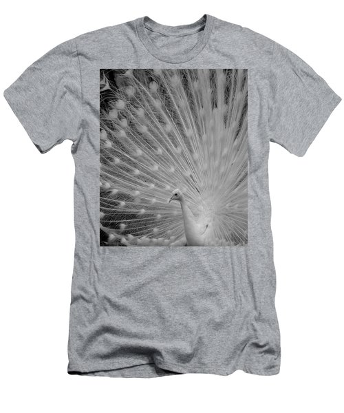 Albino Peacock In Black And White Men's T-Shirt (Athletic Fit)