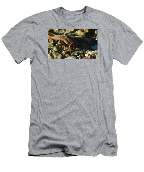 All Eyes Men's T-Shirt (Athletic Fit)