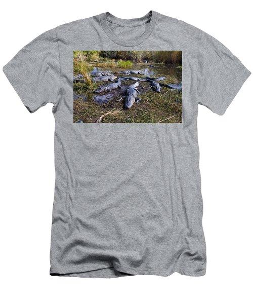 Alligators 280 Men's T-Shirt (Athletic Fit)