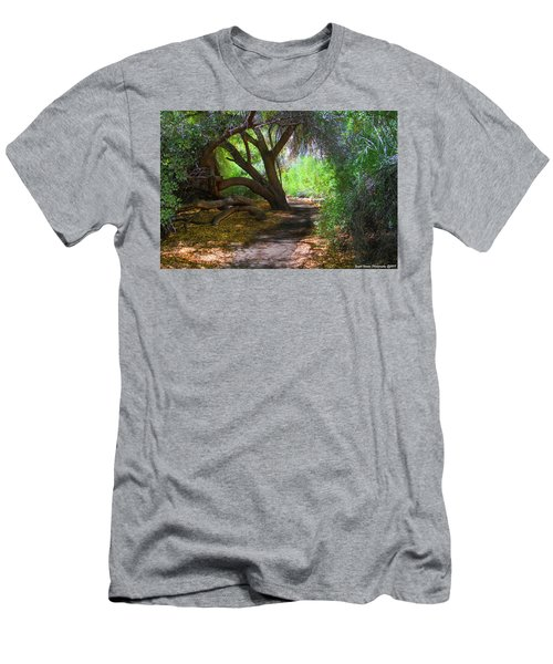 Along The Path Men's T-Shirt (Athletic Fit)