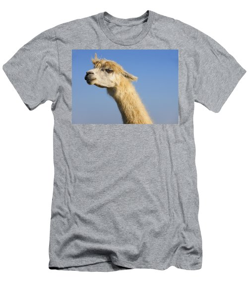 Men's T-Shirt (Slim Fit) featuring the photograph Alpaca by Skip Hunt