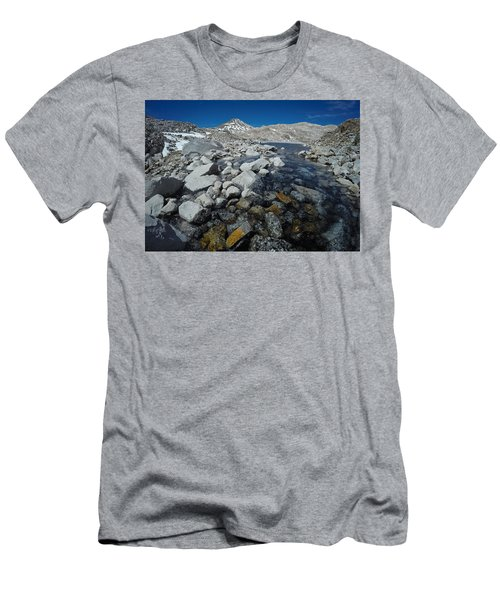 Alpine Blues Men's T-Shirt (Athletic Fit)