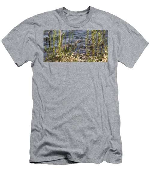 American Bittern Hunting Men's T-Shirt (Athletic Fit)