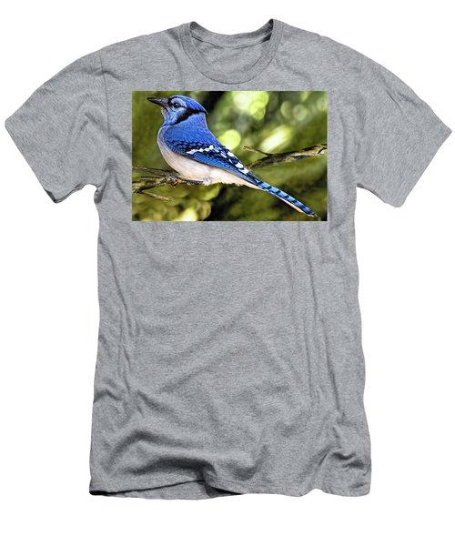 Blue Jay Bokeh Men's T-Shirt (Athletic Fit)