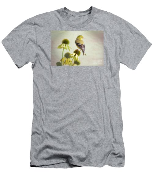 American Goldfinch On Coneflower Men's T-Shirt (Athletic Fit)