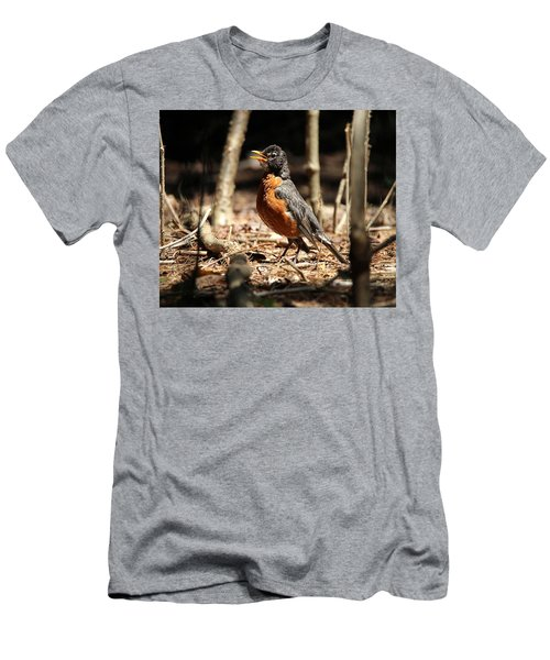 American Robin New York Men's T-Shirt (Slim Fit) by Bob Savage