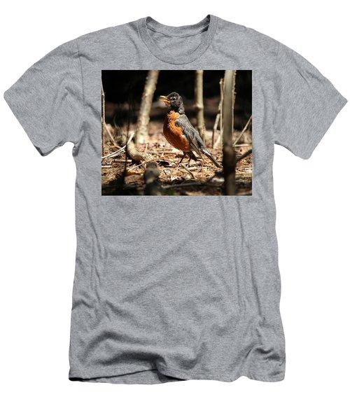 American Robin New York Men's T-Shirt (Athletic Fit)