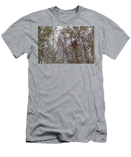 American Woodcock In October Foliage Men's T-Shirt (Athletic Fit)