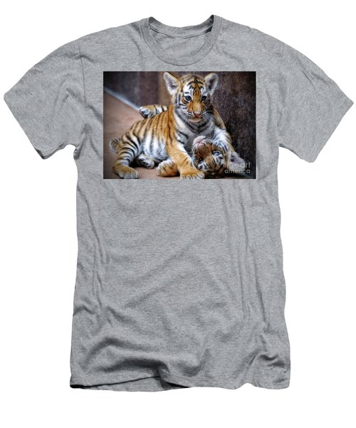 Amur Tiger Cubs Men's T-Shirt (Athletic Fit)