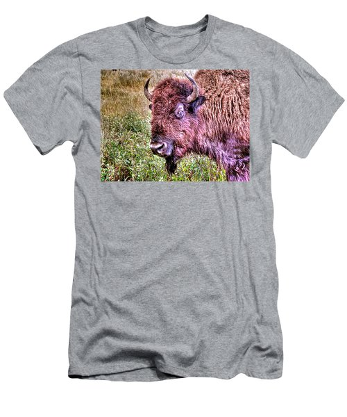 An Astonished Bison Men's T-Shirt (Athletic Fit)