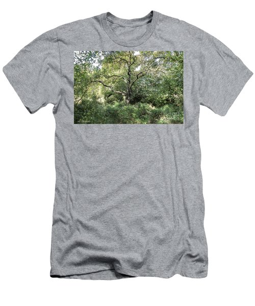 An Old One In The Forest Men's T-Shirt (Athletic Fit)