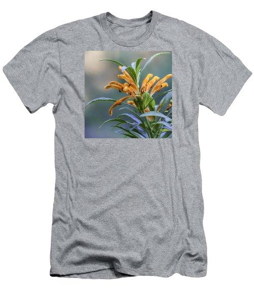 An Orange Flower Men's T-Shirt (Athletic Fit)