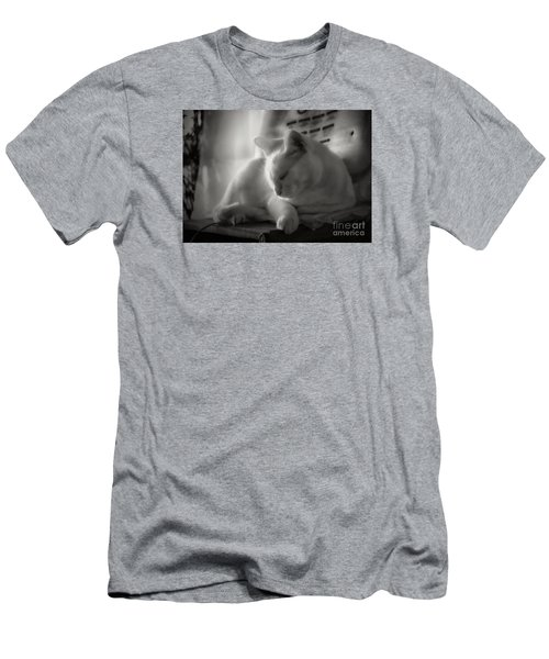 Men's T-Shirt (Slim Fit) featuring the photograph And The Sun Still Shines On My Cat by John  Kolenberg