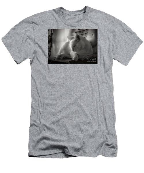 And The Sun Still Shines On My Cat Men's T-Shirt (Slim Fit) by John  Kolenberg
