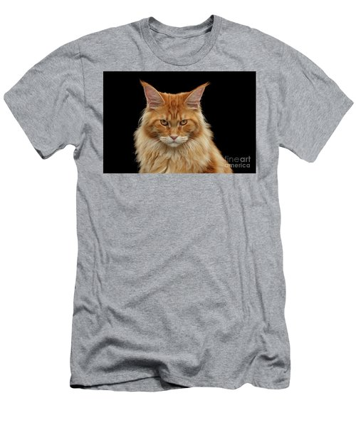 Men's T-Shirt (Athletic Fit) featuring the photograph Angry Ginger Maine Coon Cat Gazing On Black Background by Sergey Taran
