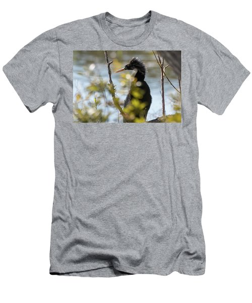 Anhinga 3 March 2018 Men's T-Shirt (Athletic Fit)