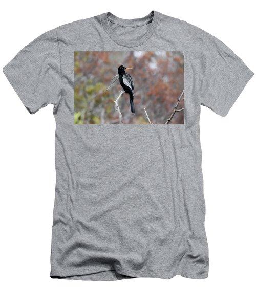 Anhinga Men's T-Shirt (Slim Fit) by Gary Wightman