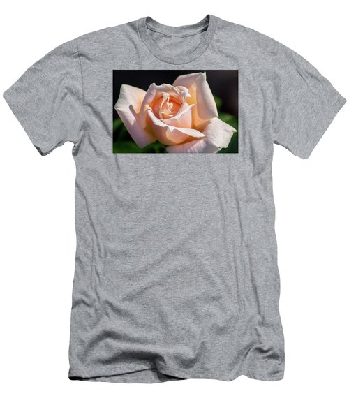 Another Beautiful Pink Rose Men's T-Shirt (Athletic Fit)