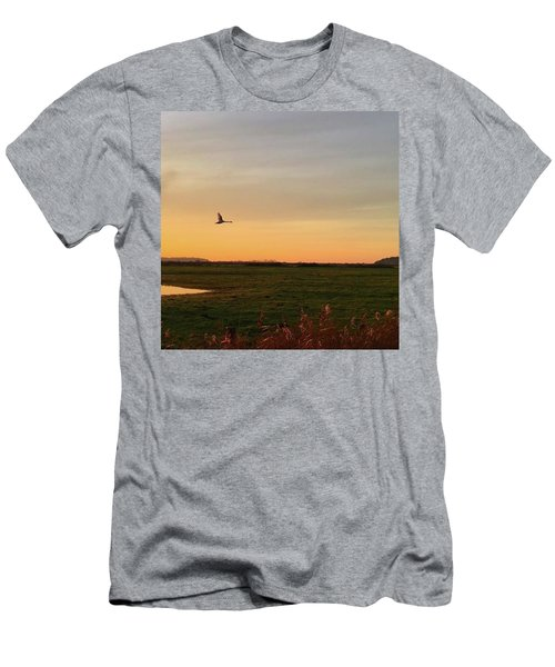 Another Iphone Shot Of The Swan Flying Men's T-Shirt (Athletic Fit)