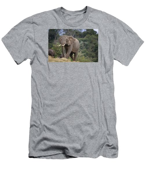 Men's T-Shirt (Slim Fit) featuring the photograph Approaching The Waterhole by Gary Hall
