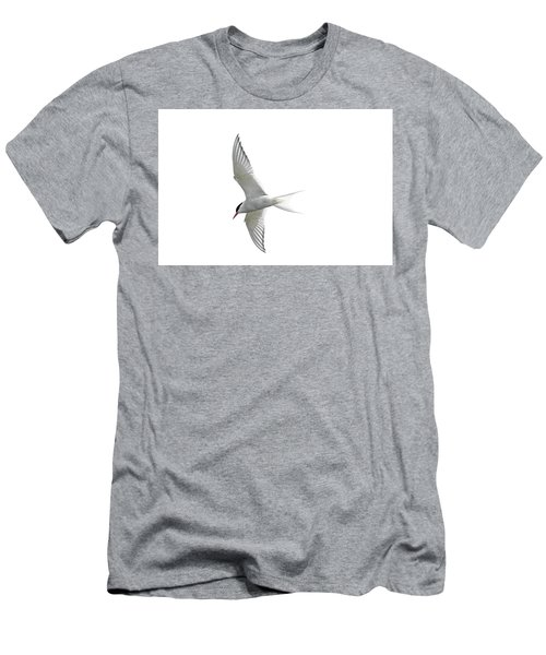 Arctic Tern Flying In Mist Men's T-Shirt (Athletic Fit)