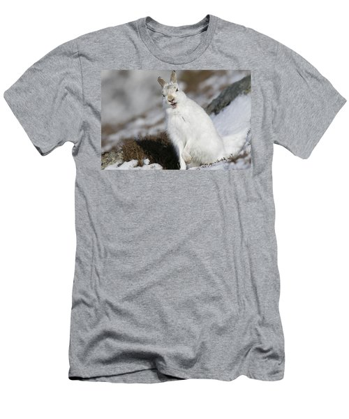 Are You Kidding? - Mountain Hare #14 Men's T-Shirt (Athletic Fit)