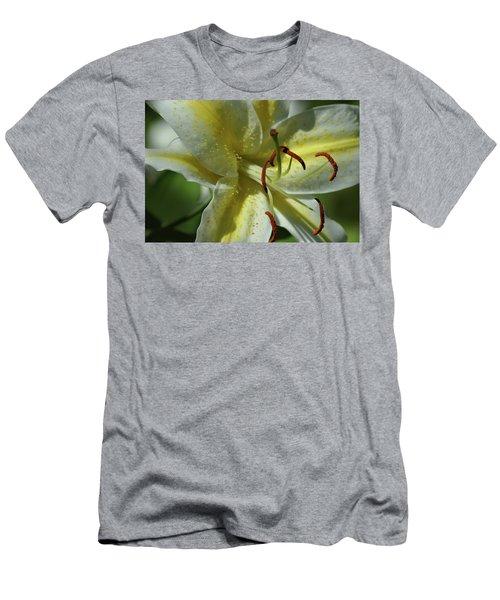 Asiatic Lily No 2 Men's T-Shirt (Athletic Fit)