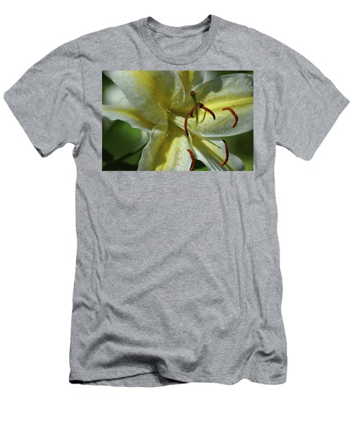 Asiatic Lily No 2 Men's T-Shirt (Athletic Fit)