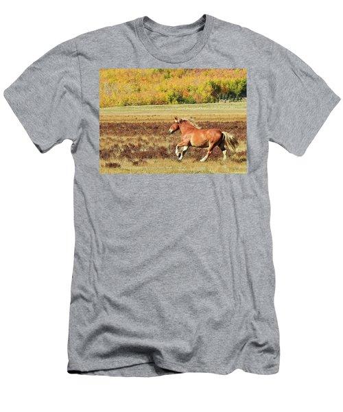 Aspen And Horsepower Men's T-Shirt (Athletic Fit)