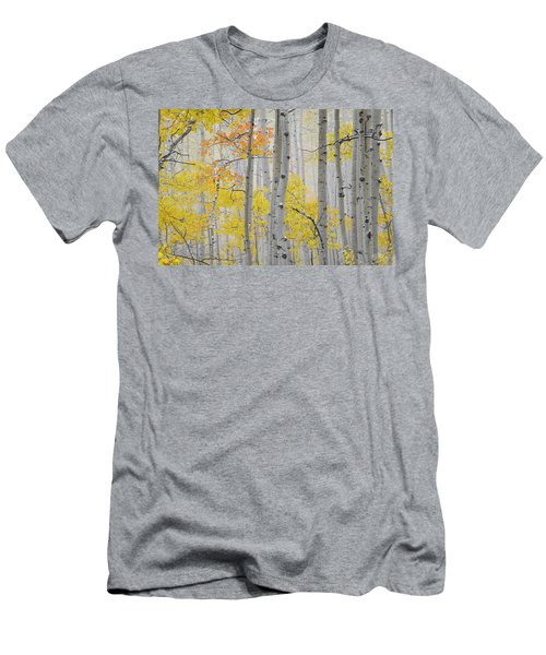 Aspen Forest Texture Men's T-Shirt (Athletic Fit)