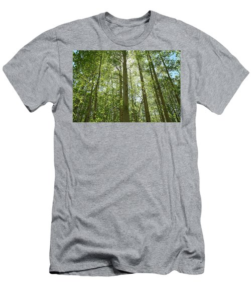 Aspen Green Men's T-Shirt (Athletic Fit)