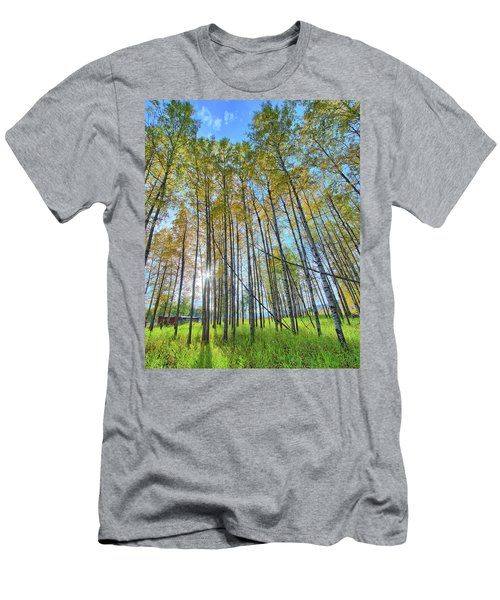 Aspen Grove Men's T-Shirt (Athletic Fit)