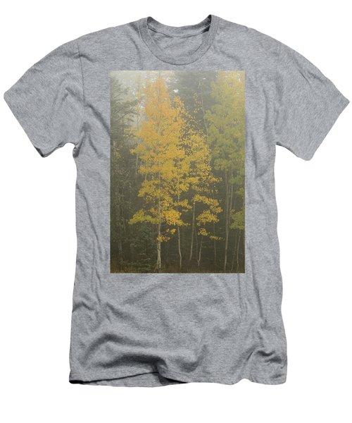 Aspen In The Fog Men's T-Shirt (Athletic Fit)