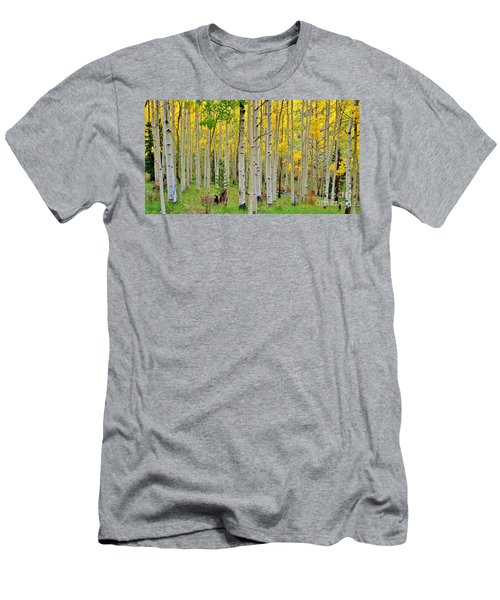 Aspen Slope Men's T-Shirt (Athletic Fit)