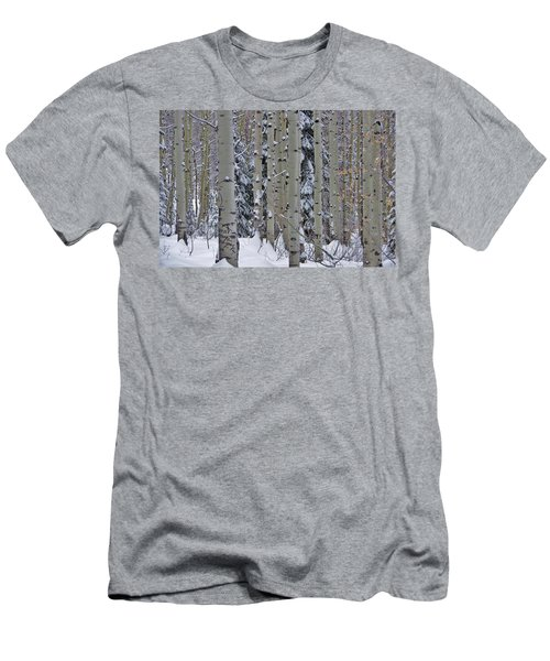 Aspen Snow Men's T-Shirt (Slim Fit) by Matt Helm