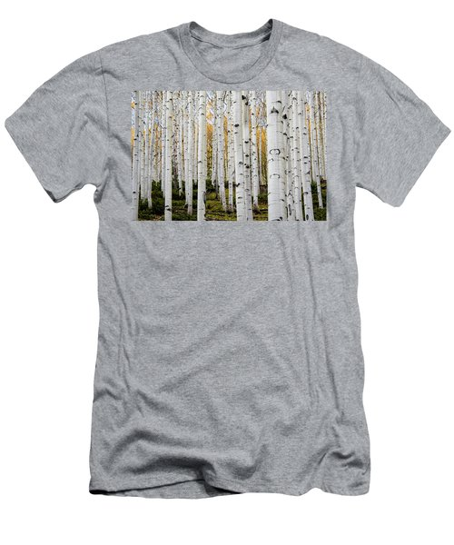 Aspens And Gold Men's T-Shirt (Athletic Fit)