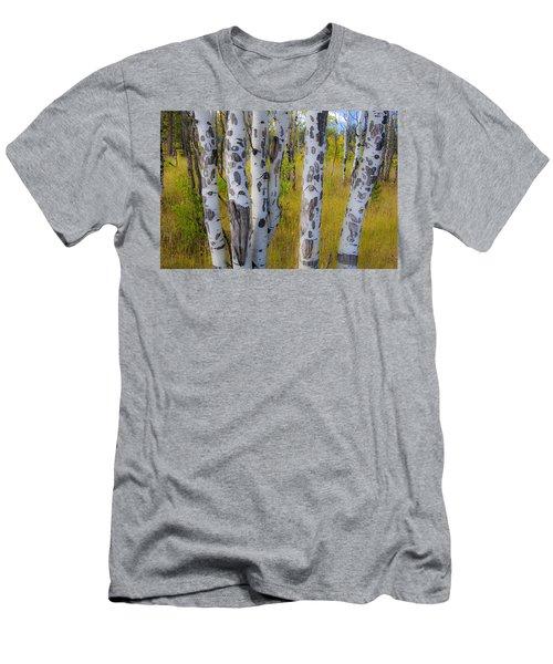 Aspens Men's T-Shirt (Athletic Fit)