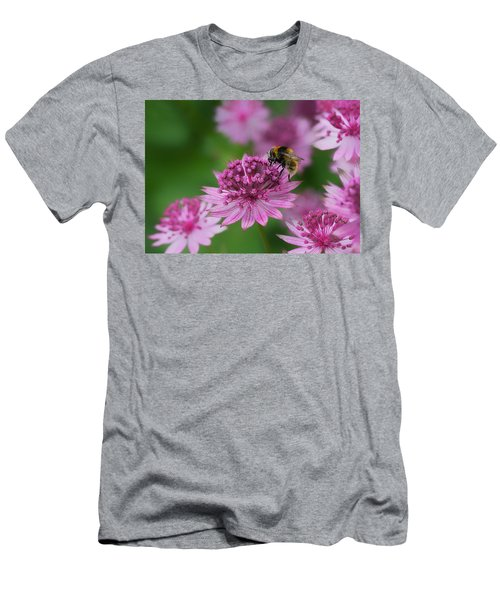 Pollination Men's T-Shirt (Slim Fit) by Shirley Mitchell