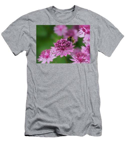 Pollination Men's T-Shirt (Athletic Fit)