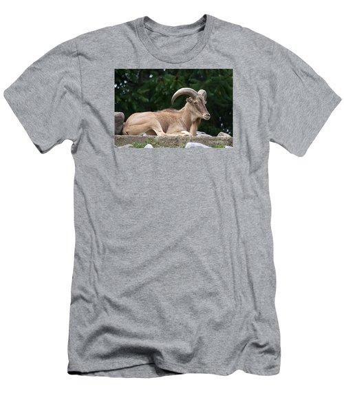 Auodad 20120714_80a Men's T-Shirt (Slim Fit) by Tina Hopkins