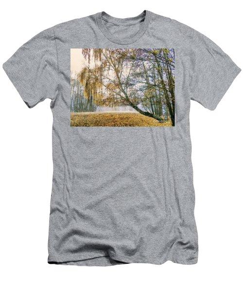 Autumn Colorful Birch Trees Paint Men's T-Shirt (Athletic Fit)