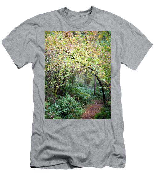 Autumn Colors In The Forest Men's T-Shirt (Athletic Fit)