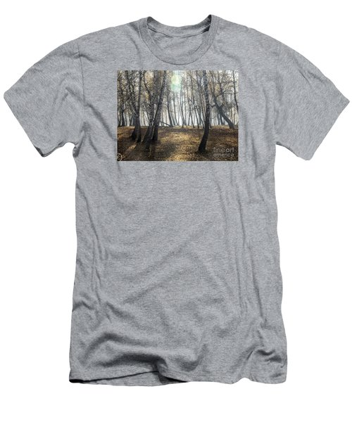 Autumn Deep Fog In The Morning Birch Grove Men's T-Shirt (Slim Fit) by Odon Czintos
