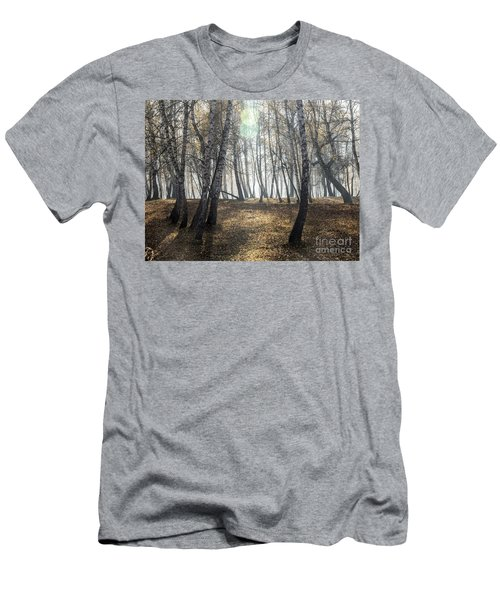 Autumn Deep Fog In The Morning Birch Grove Men's T-Shirt (Athletic Fit)